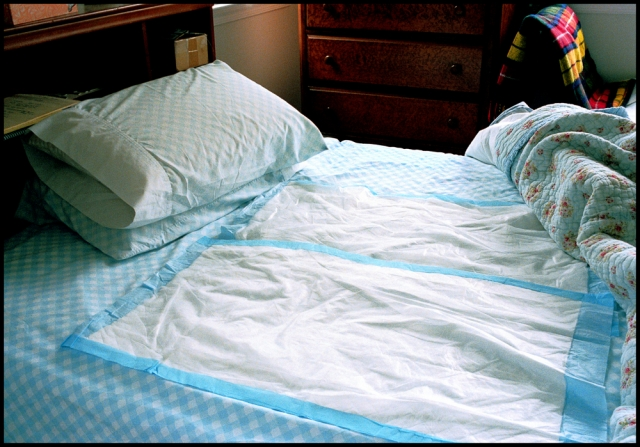 Bed with sheet protectors